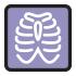 IIC_0005_XRAY-Rollover